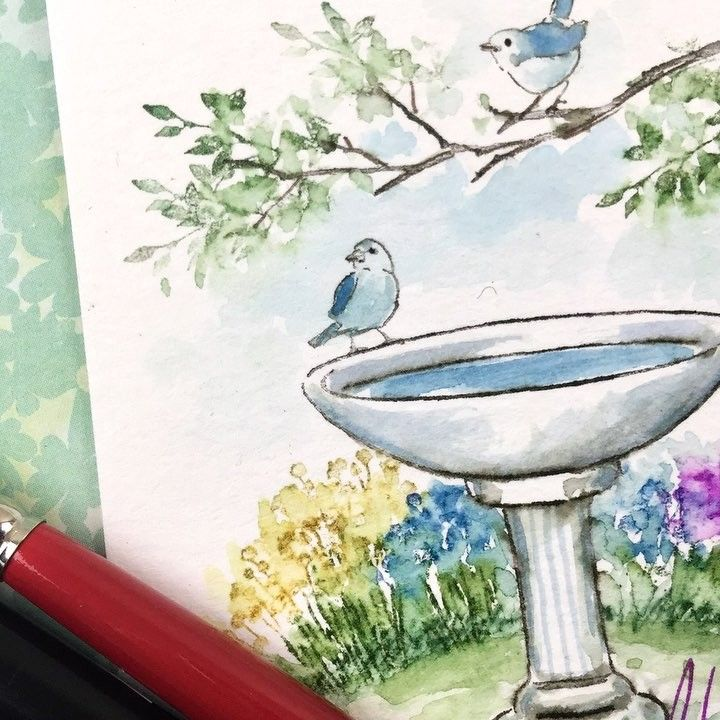 Did You Catch Our Last Week S Watercolorwednesday Bonnie