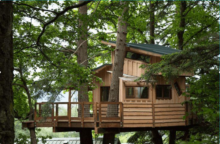 33 of the Best Tree House Ideas Ever for Grown Kids