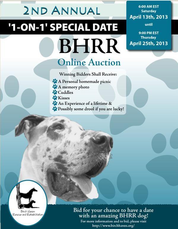 Ottawa Dog Rescue Organizations