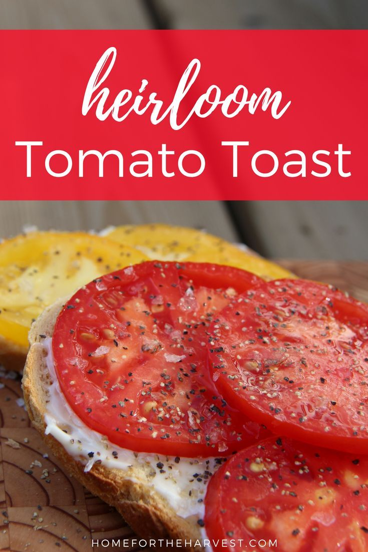 Tomatoes on toast are SO yummy if you've got fresh heirloom tomatoes! Tomato toast is my all-time favourite summer snack. It's the perfect garden-to-table meal during harvest season! | Home for the Harvest #heirloomtomatoes #heirloomtomato #tomatotoast #t