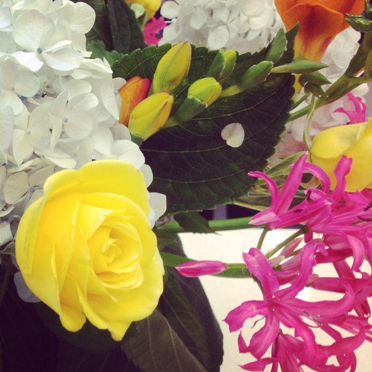 #flowers #whitehydrangeas #pinkandyellow