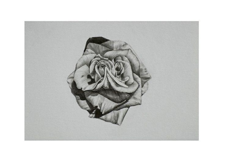 Rosanna Smith - Elam School of Fine Arts - Auckland University