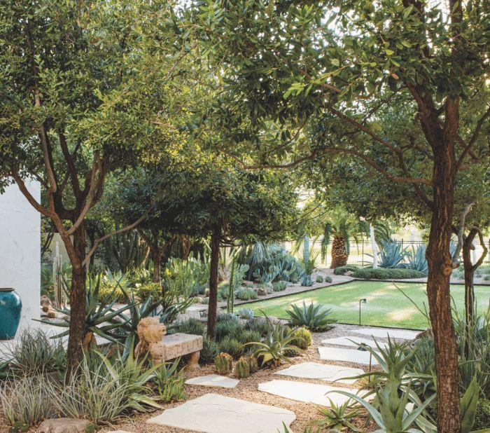 unusual phoenix home and garden. A Spanish Colonial Phoenix Home Gets Funky Makeover 6518 best desert garden images on Pinterest  Yard design Backyard