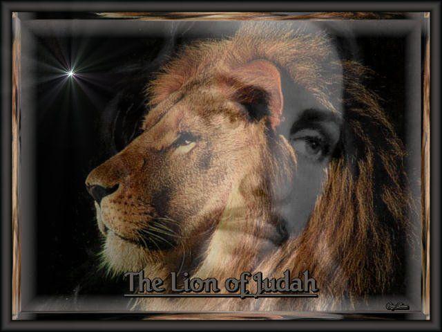 Lion of Judah Details