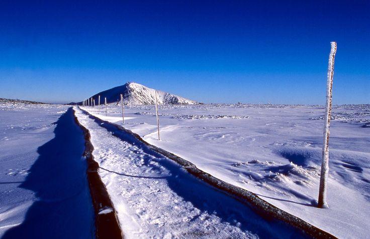 Path to the Snezka Mount, the highest peak of the Czech Republic, Krkonose National Park