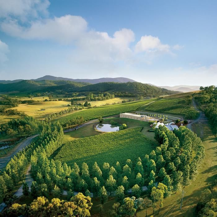 TarraWarra Estate makes some excellent pinot noir and chardonnay.