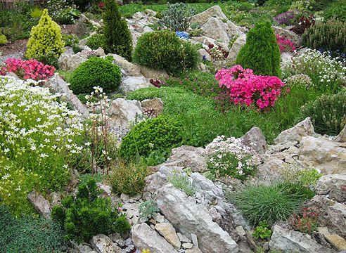 Сад Светланы Полонской, альпинарий, альпийская горка