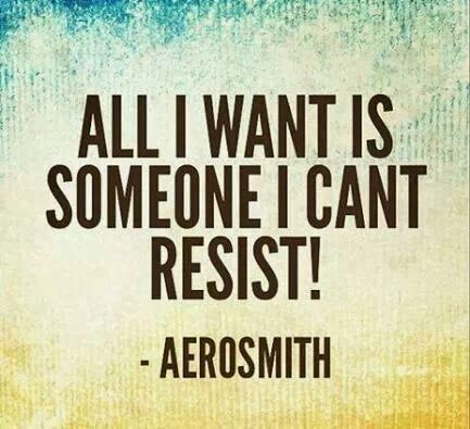 All I want is someone I can't resist. love is a quest all in it self and worth a lifetime to complete. for others it's not