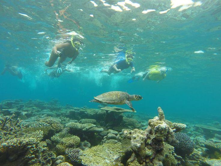 #hello #Maldives #travel #unique #experience #summer #paradise #beach #relax #stunning #beauty #lagoon #escape #ocean #exotic #seaside #holiday #mood #joy #island #fun #sun #amazing #ff #fff #follow #your #dream #by_jo by hello.maldives