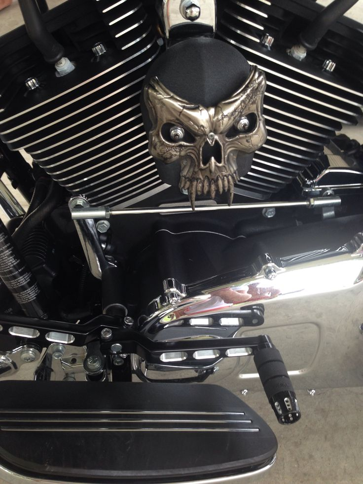 18 Best Images About Harley Davidson Horn Cover On