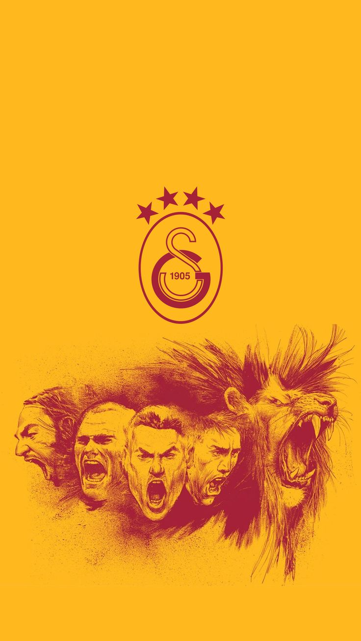 #galatasaray #cimbom #sneijder #lion #selcukinan #burakyılmaz #muslera