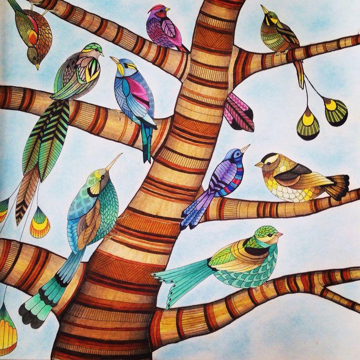 Millie Marottas Tropical Wonderland Colourist Kimi Jolly
