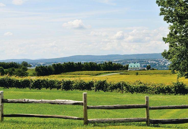 #agrotourisme : 5 destinations pour goûter le Québec #quebec