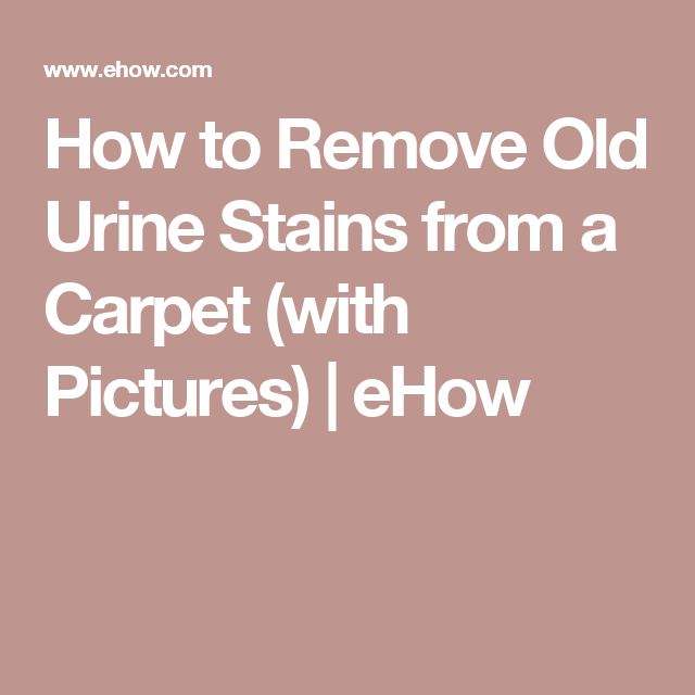 How To Remove Old Urine Stains From A Carpet