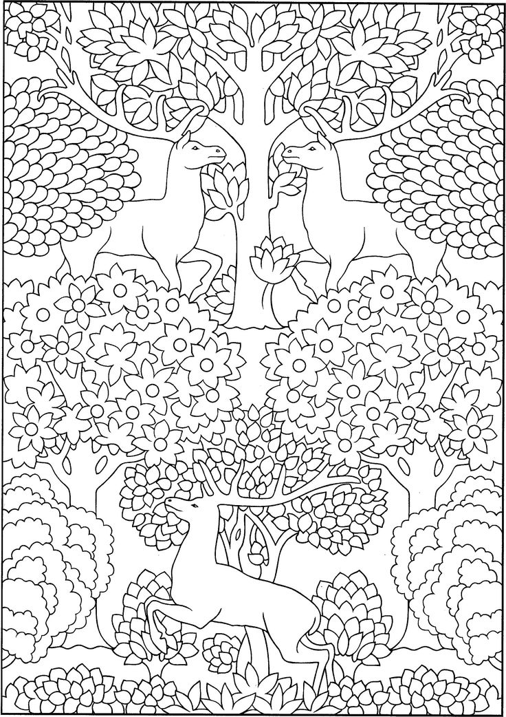 18 best coloring pages images on pinterest color by numbers cool coloring pages and drawing. Black Bedroom Furniture Sets. Home Design Ideas