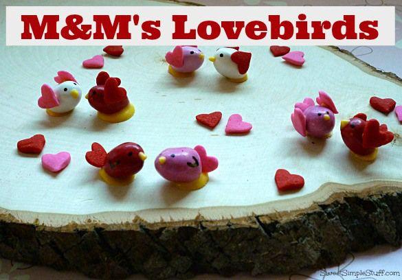how to treat injured love birds