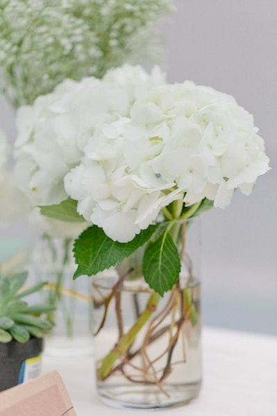 white hydrangea centerpiece would be pretty with baby's breath alternated