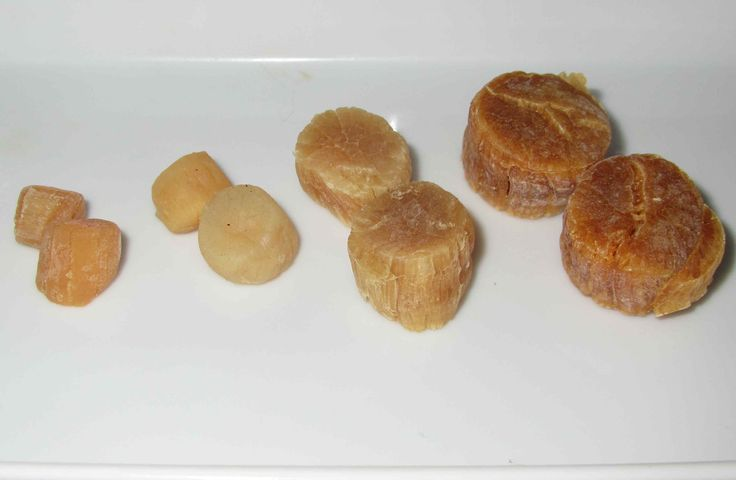 Conpoy; dried scallops