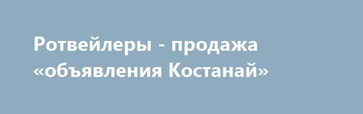 Ротвейлеры - продажа «объявления Костанай» http://www.pogruzimvse.ru/doska208/?adv_id=265 Предлагаются к продаже питомниковые щенки ротвейлера. Возраст 3 месяца. Есть мальчики и девочки. Отличные щенки от родителей - чемпионов. {{AutoHashTags}}