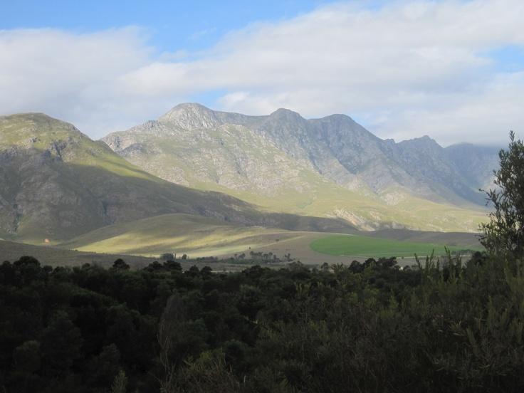 Just 'over the berg', the Hottentots-Holland Mountains, via Sir Lowry's Pass, you are struck by the immense beauty of the region. From orchards to forests, the rolling mountains introduced us to The Overberg, the largest apple producing region in South Africa.
