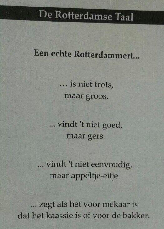 Rotterdammert