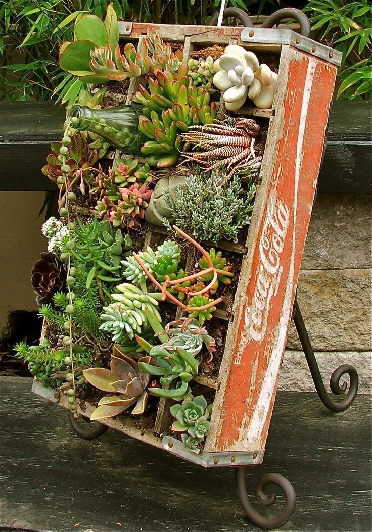 """Wooden soda crate transformed into an """"artful"""" container full of succulents."""