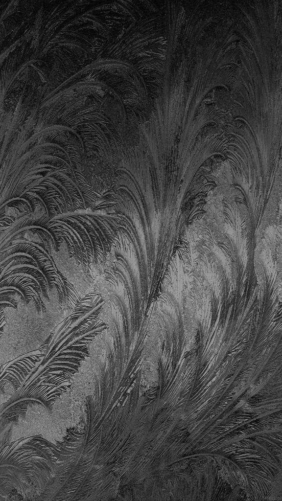 Iphone Xs 2019 Wallpaper Iphone Xs Dynamic Wallpaper Iphone Xs Wallpaper Iphone Xs Best Wallpaper Android Wallpaper New Wallpaper Iphone Wallpaper Images Hd Iphone xs wallpaper grey