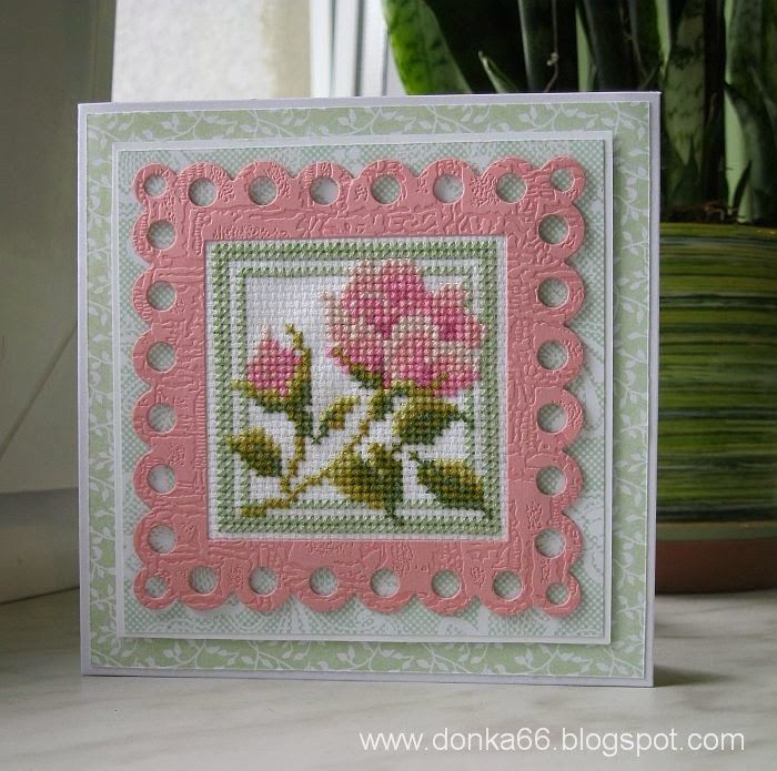 Rose with pink boarder