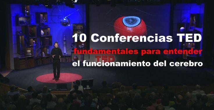 Nueve conferencias TED tals, fundamentales para entender el funcionamiento del cerebro, neurocientificos explican como el cerebro trabaja.
