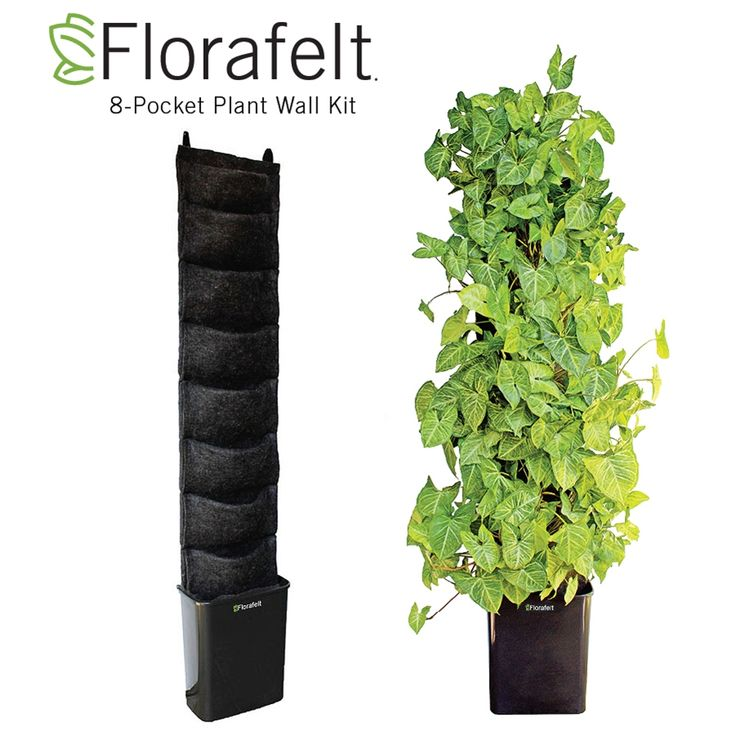 Create Your Own Vertical Garden Or Living Wall In Compact Spaces. Use Felt  Wraps And