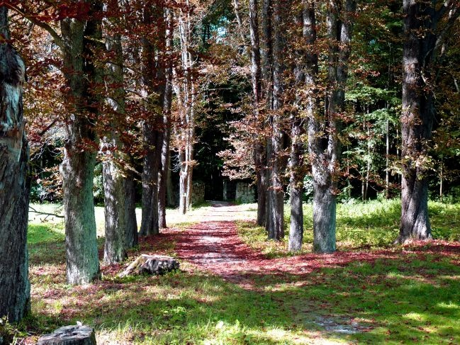 Betliar - Park 2
