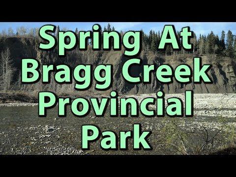 Spring at Bragg Creek Provincial Park 4K Video – Journey Alberta