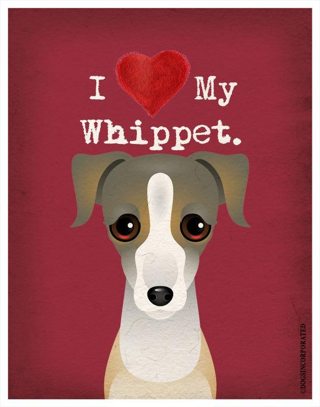 I Love My Whippet - 11x14 Dog Poster. $20.00, via Etsy.