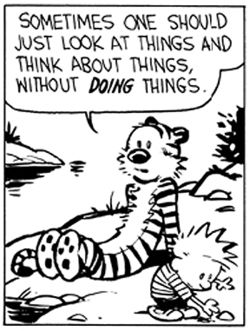 Sometimes one should just look at things and think about things, without doing things