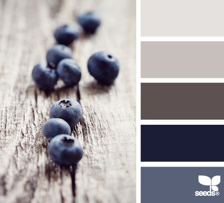 blueberry tones-----thinking I need to redo my living room in some 'blueberry' color so that I can bring out all my blue and white lamps and vases, etc., etc.!!!! They've been packed away for much too long now!