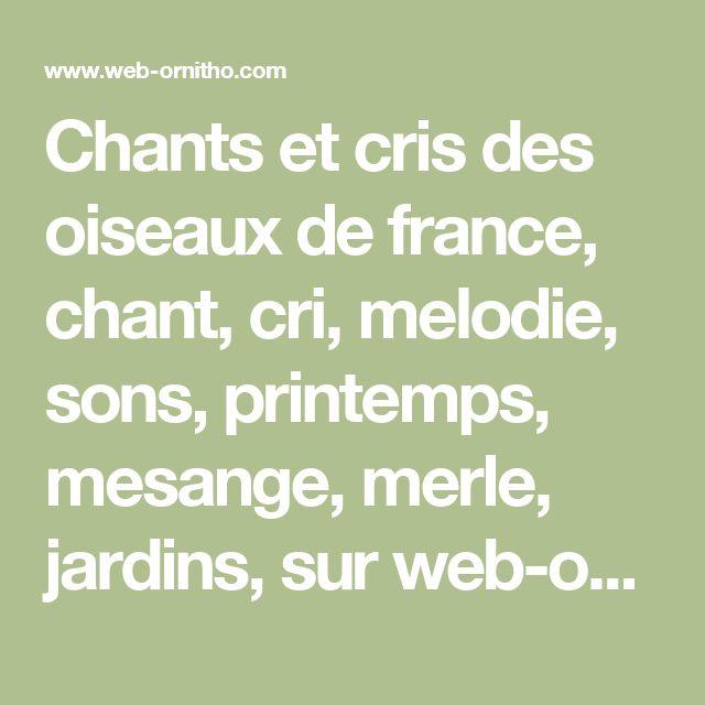 Chants et cris des oiseaux de france, chant, cri, melodie, sons, printemps, mesange, merle, jardins, sur web-ornitho, shouting and singing of birds