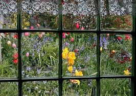 Shouldn T You Be Able To See Your Garden Through Windows Window Viewcleaningcorona