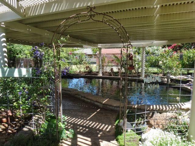 1000 images about garden ponds on pinterest backyard for Koi pond construction cost