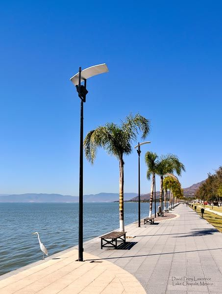 The Malecon, Lake Chapala, Ajijic, Mexico. By D. Perry Lawrence. Rapid Delivery on all prints and cell-phone cases by D. Perry Lawrence.