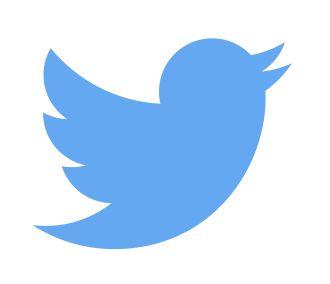 Un nuevo logo... A New Day, A New Bird | Twitter Developers