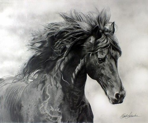 Don't miss the incredibly intricate portfolio of Featured Artist Barbara Schacher. See her work at www..ArtsyShark.com