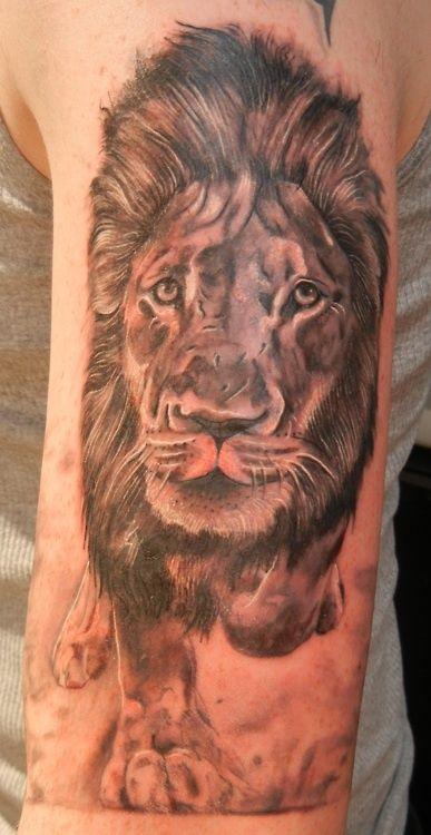 16 best lion of juda tattoos images on pinterest lion of judah simple lion tattoo and tattoo. Black Bedroom Furniture Sets. Home Design Ideas