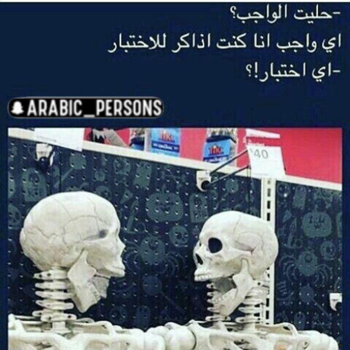 مذاكره Funny Arabic Quotes Arabic Quotes Funny