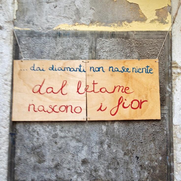 Dai diamanti non nasce niente, dal letame nascono i fiori.  Venezia, Italia - photo by Alfredo Carbone