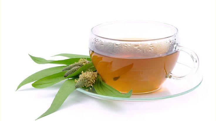 Hilft dir bei: Augenentzündung, Gerstenkörnern, Halsschmerzen, Heiserkeit, Schluckbeschwerden Ausschlag, Bienenstich, Ekzemen, Insektenstich, Mückenstich, Wespenstich Erkältung, Grippe, Husten, Hustenreiz, Reizhusten, Schnupfen  Du brauchst: 1 EL Spitzwegerichkraut 1 Teeei 250 ml heißes Wasser 1 sterile...
