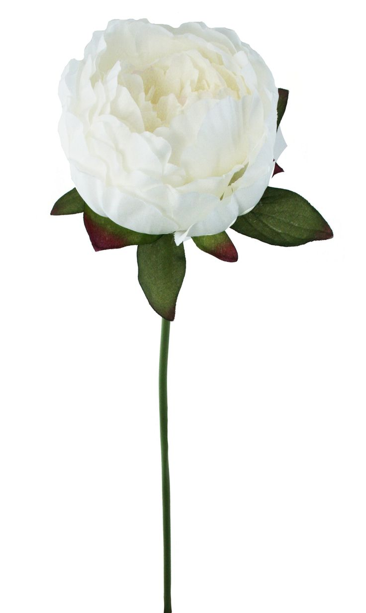 Ivory Peony Stem - Silk Peony Ivory - Wedding Flowers - TheBridesBouquet.com