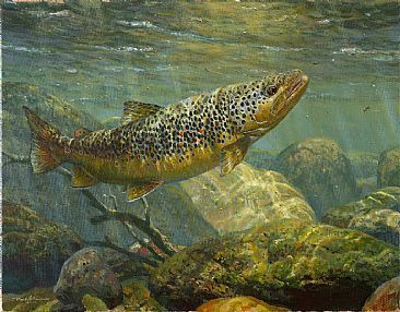 Brown Trout - Painting - Nature Art by Mark Susinno