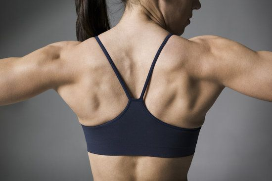 Back Exercises For Posture