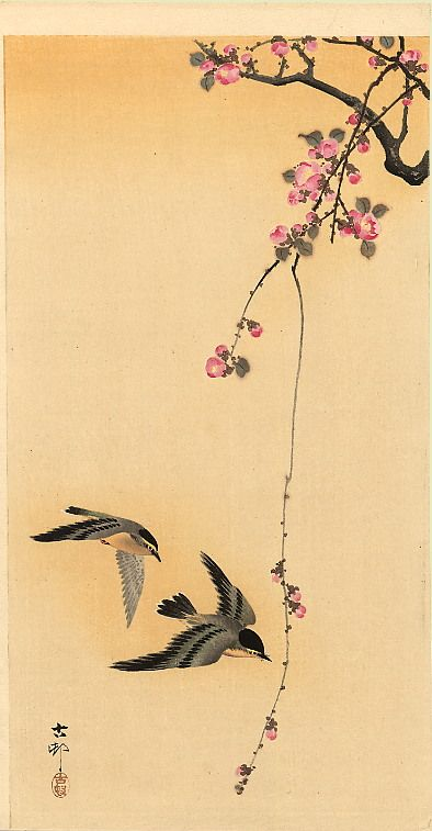 Cherry blossom with birds - Ohara Koson, yellowed paper