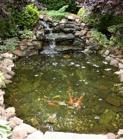 54 best images about fish pond on pinterest backyard for Do it yourself koi pond
